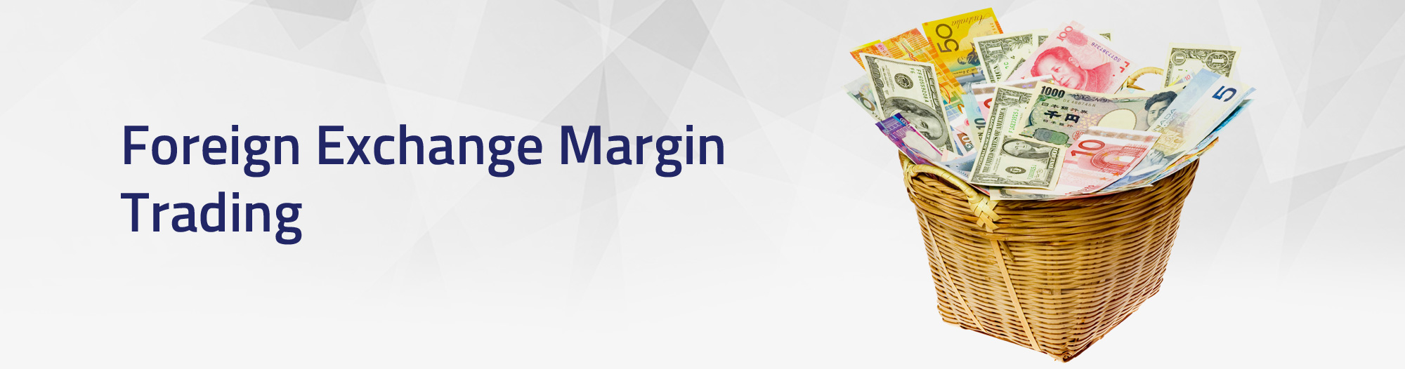 Foreign Exchange Margin Trading